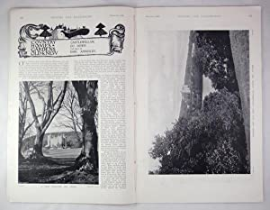 Original Issue of Country Life Magazine Dated March 3rd 1900, with a Main Feature on Castlewellan...