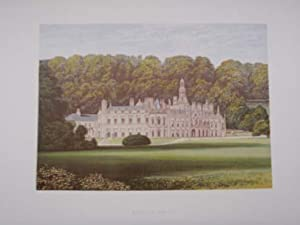 An Original Antique Colour Print Illustrating Shelton Abbey in Wicklow. Published Ca 1880.