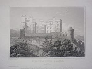 Original Antique Engraving Illustrating a View of Mitchelstown Castle in Cork, Ireland By J.P. Ne...