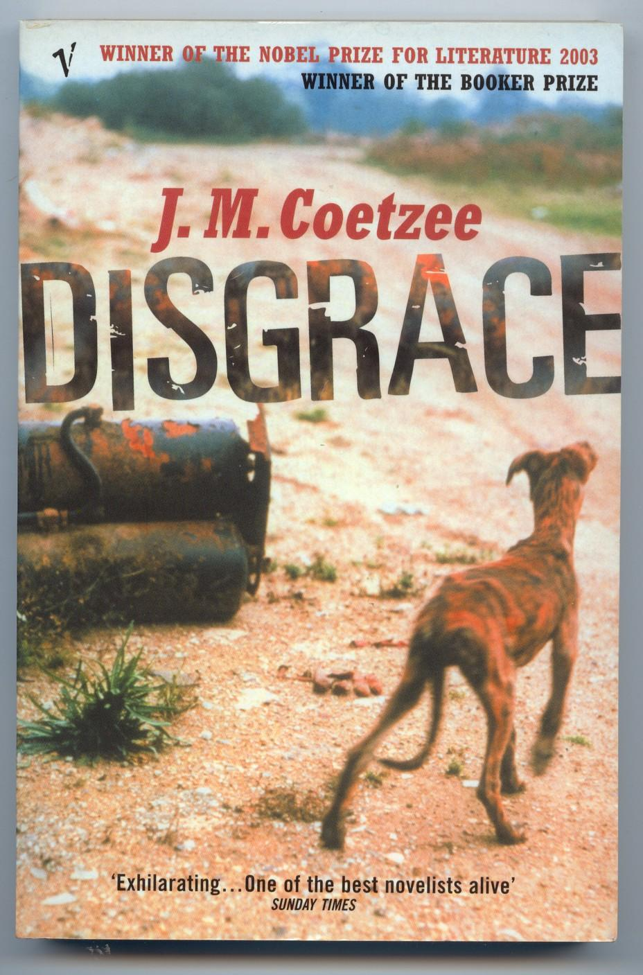 disgrace novel essays Characters and theme analysis in jm coetzee novel disgrace a thesis submitted to the letters and humanities.