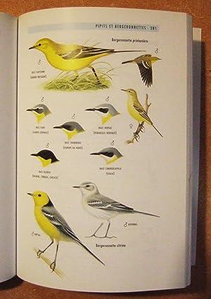 500 Especes D'oiseaux d'Europe: Collectif
