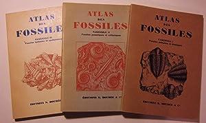 Atlas des fossiles: DENIZOT (Georges)
