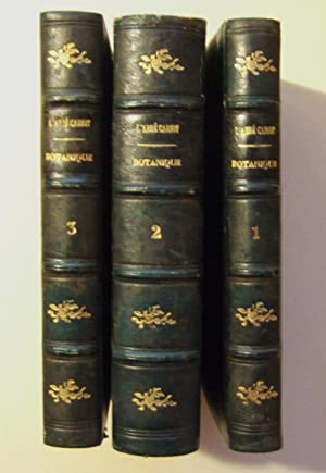 Botanique Élémentaire, Descriptive et Usuelle: Cariot (abb�)