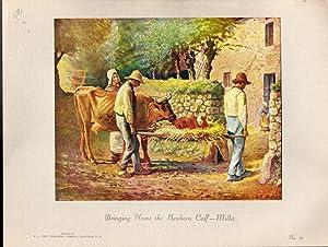 "Bringing Home the Newborn Calf"" (Original Title: Millet, Jean-Francois (artist)"