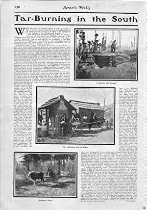 "PRINT: ""Tar-Burning in the South"".story & Photos from Harper's Weekly, July 20, ..."