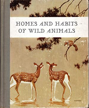 Homes and Habits of Wild Animals; North: Schmidt, Karl Patterson