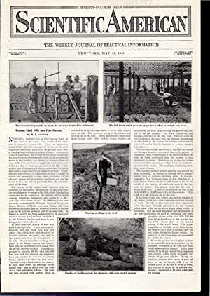PRINT:'Turning Sand Hills into Pine Forest' .story: Crawford, R.P.) Scientific