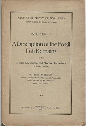 A Description of the Fossil Fish Remains of the Cretaceous, Eocene and Miocene Formations of New ...