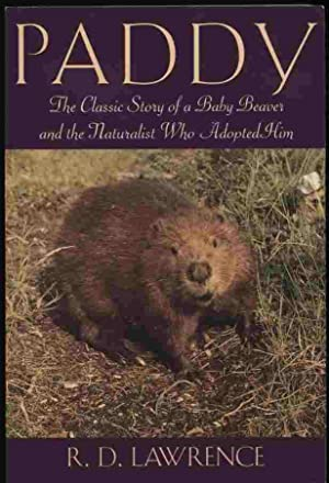 Paddy - The Classic Story of a Baby Beaver and the Naturalist Who Adopted Him: Lawrence, R. D.