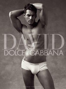 David gandy dolce and gabbana book