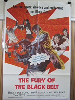 FURY OF THE BLACK BELT 1973 MARTIAL ARTS MOVIE POSTER FN