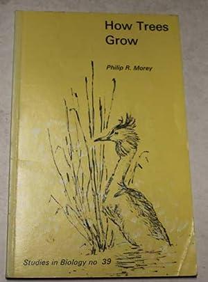 How Trees Grow: Morey, Philip R.