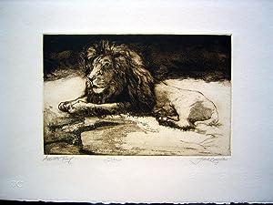 Lion: Jack Coughlin (SIGNED Limited Ed. Print): COUGHLIN, Jack