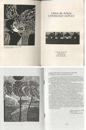 Libros De Artista / Exposicion Portafolios Cuaderno: GOTAY, Consuelo (