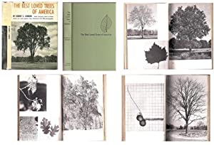 Best Loved Trees of America, the (with 293 photographs)