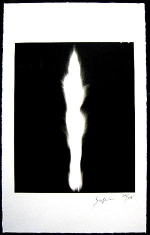 In Praise of Shadows (SIGNED by Hiroshi: SUGIMOTO, Hiroshi