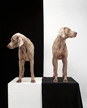 Game Board 2003/2010 (SIGNED by William Wegman: Limited Ed. photo/print: Size:14 x 11in):...