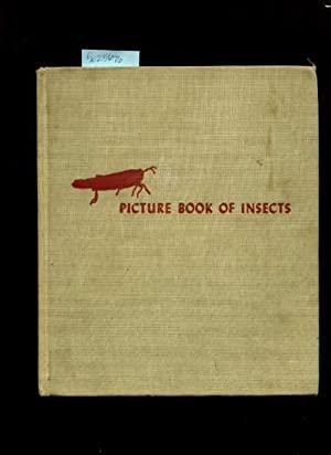 Picture Book of Insects [Pictorial Children's Reader, Learning to Read, Skill Building, ...
