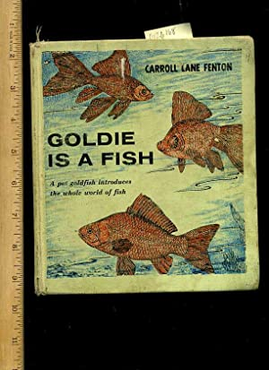 Goldie is a Fish [Pictorial Children's Reader, Learning to Read, Skill Building, Fish ...