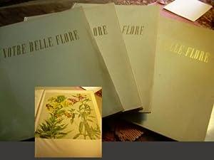 Notre Belle Flore : 12 Planches En Dix Couleurs D'apres Les originaux De Hans Schwarzenbach : ...