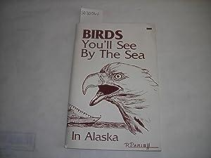 Birds You'll See By the Sea in Alaska [Birding, Bird Watching, Travel, Bald Eagle, Raven]: ...