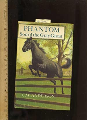 Phantom Son of the Gray Ghost [Pictorial Children's Reader, Learning to Read, Skill building]: ...