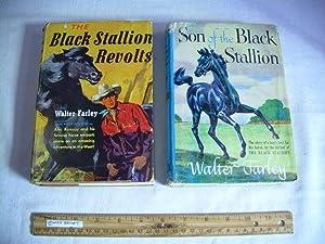 Son of the Black Stallion / Black Stallion Revolts : 1953 First Ed [2 Books, Juvenile ...