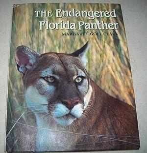 The Endangered Florida Panther: Clark, Margaret Goff