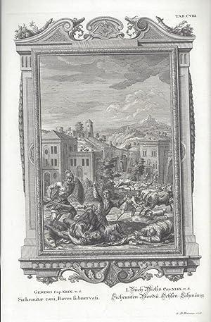 BibeI. I.Buch Mosis Cap. XLIX. V. 6: Scheuchzer, Johann Jakob