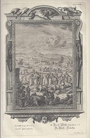 BibeI. II.Buch Mosis Cap. IX. v. 3: Scheuchzer, Johann Jakob