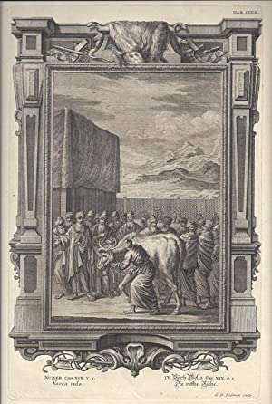 BibeI. V. Buch Mosis Cap. XIX. v.: Scheuchzer, Johann Jakob