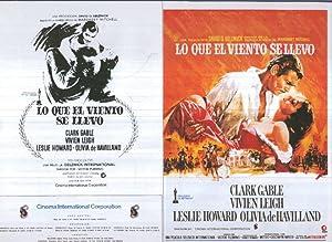 Caratula cine 30x22 cm: Lo que el: Varios