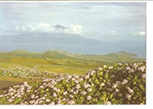 Postal 050324 : Açores Faial-Pico: Varios