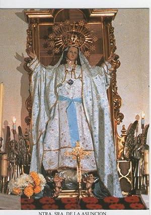Postal Virgenes 0360 : Nuestra Señora de: Varios