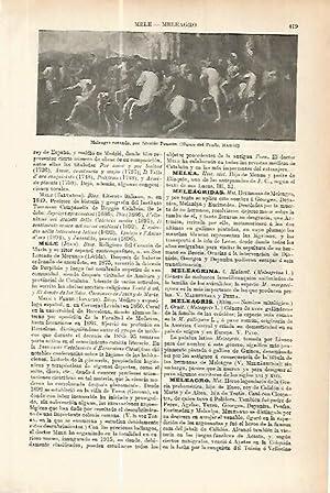 LAMINA ESPASA 17748: Meleagro cazando por Poussin: Varios