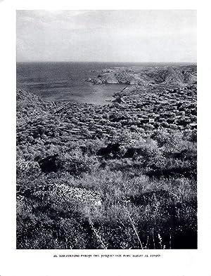 LAMINA 5833: Paraje del Jonquet con Port: Josep Pla