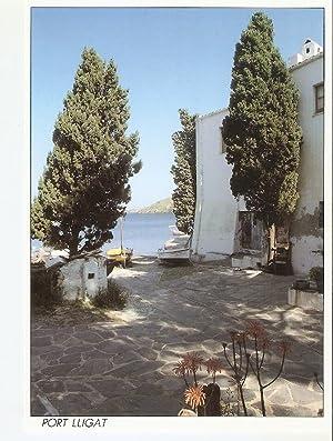 Postal 043800 : Port Lligat. Costa Brava: Varios