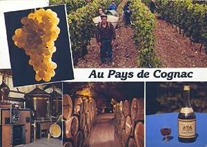 POSTAL 57652: Au Pays de Cognac: Varios