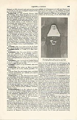 LAMINA ESPASA 24412: Madre Maria Rafols fundadora: Varios