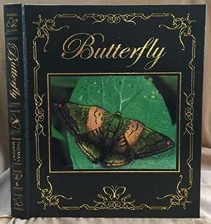 Butterfly: Marent, Ben Thomas