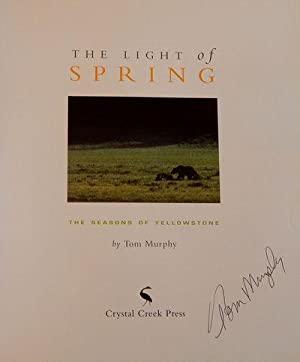 The Light of Spring: Murphy, Tom