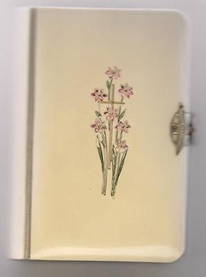 Myrtenblüten; Katholisches Gebet- und Andachtsbuch der christlichen: Steeger, Anton: