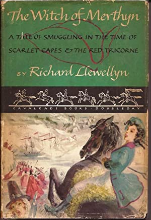 Witch of Merthyn, A Tale of Smuggling: Llewellyn, Richard