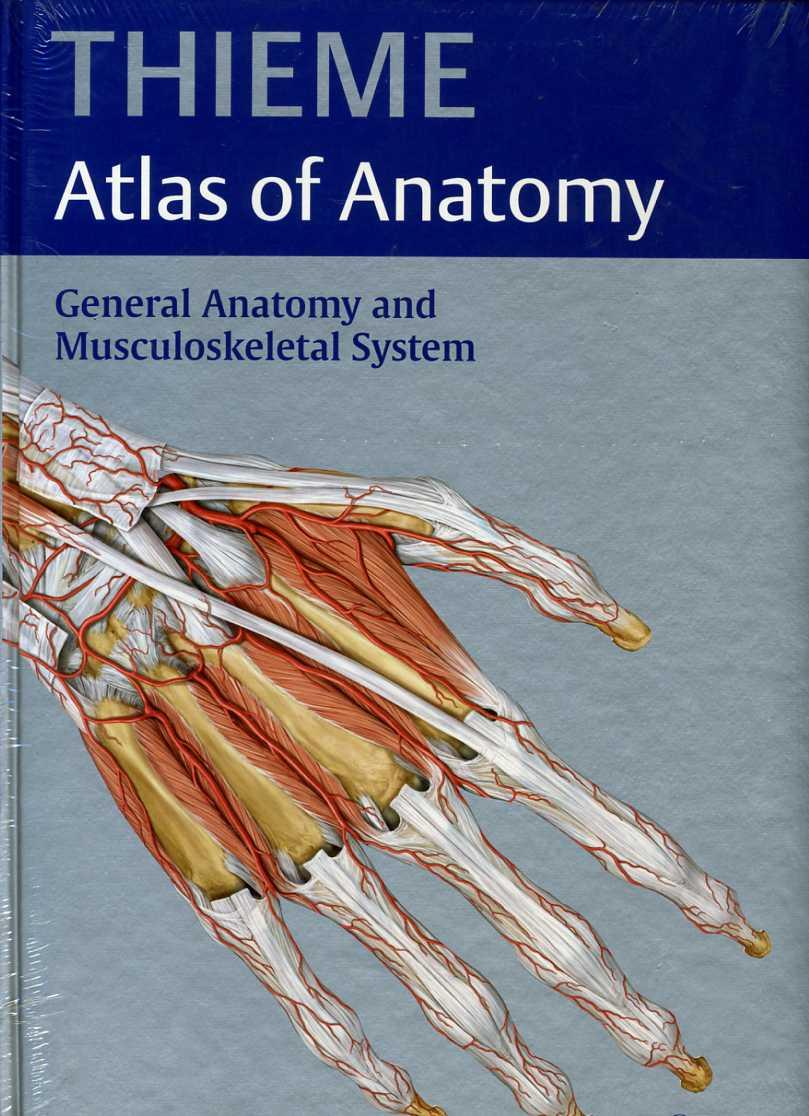 General Anatomy and Musculoskeletal System Thieme Atlas of Anatomy ...