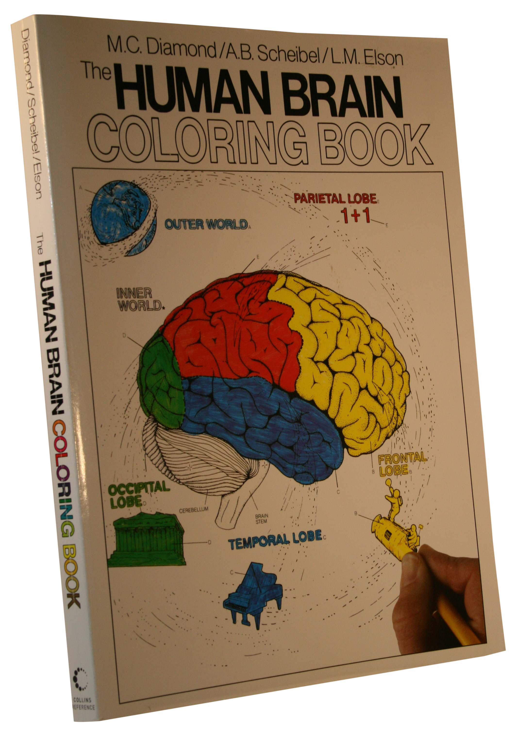The Human Brain Coloring Book.