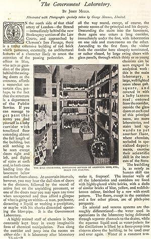 The Government Laboratory. A rare original article from The Strand Magazine, 1901.: Mills, John