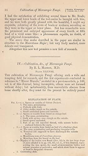 Cultivation of Microscopic Fungi. A rare original article from the Transactions of the Royal ...