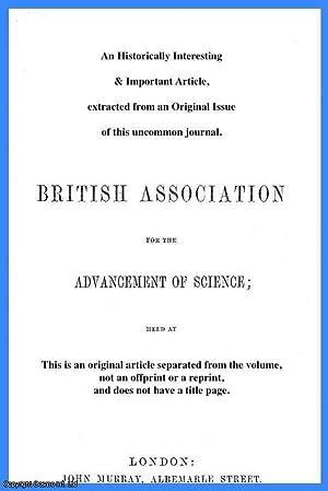 On the Didermic Blastocyst of the Mammalia.: Professor A.W.W. Hubrecht, LL.D.