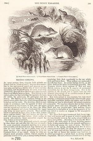 British Shrews; Locomotion of Animals, part 2;