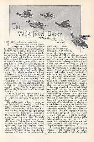 The Wild-Fowl Decoy. An original article from: Bensusan, S.L.